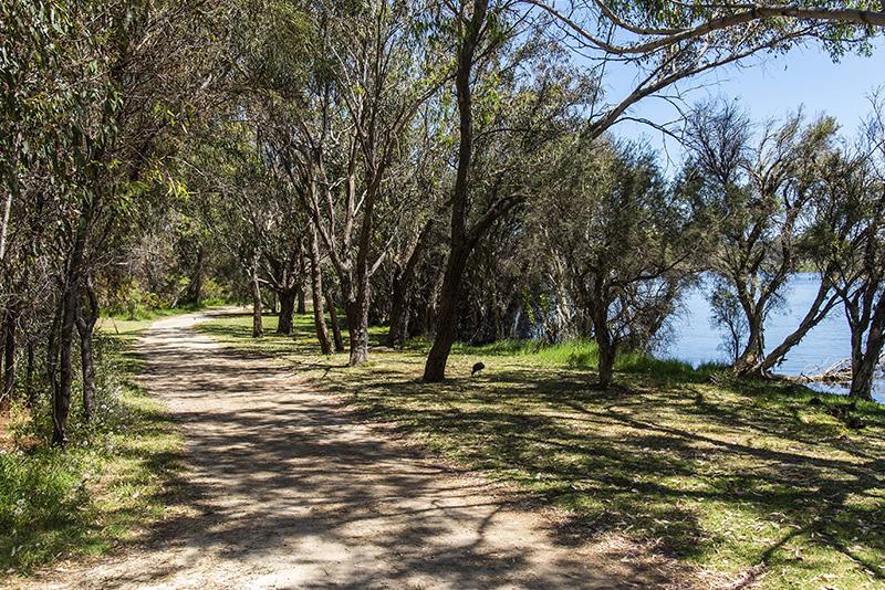 4-2 Waterway Ct Churchlands (19)